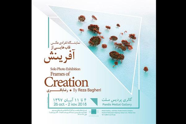 افتتاح نمایشگاه عکس «قاب هایی از آفرینش» در گالری پردیس ملت
